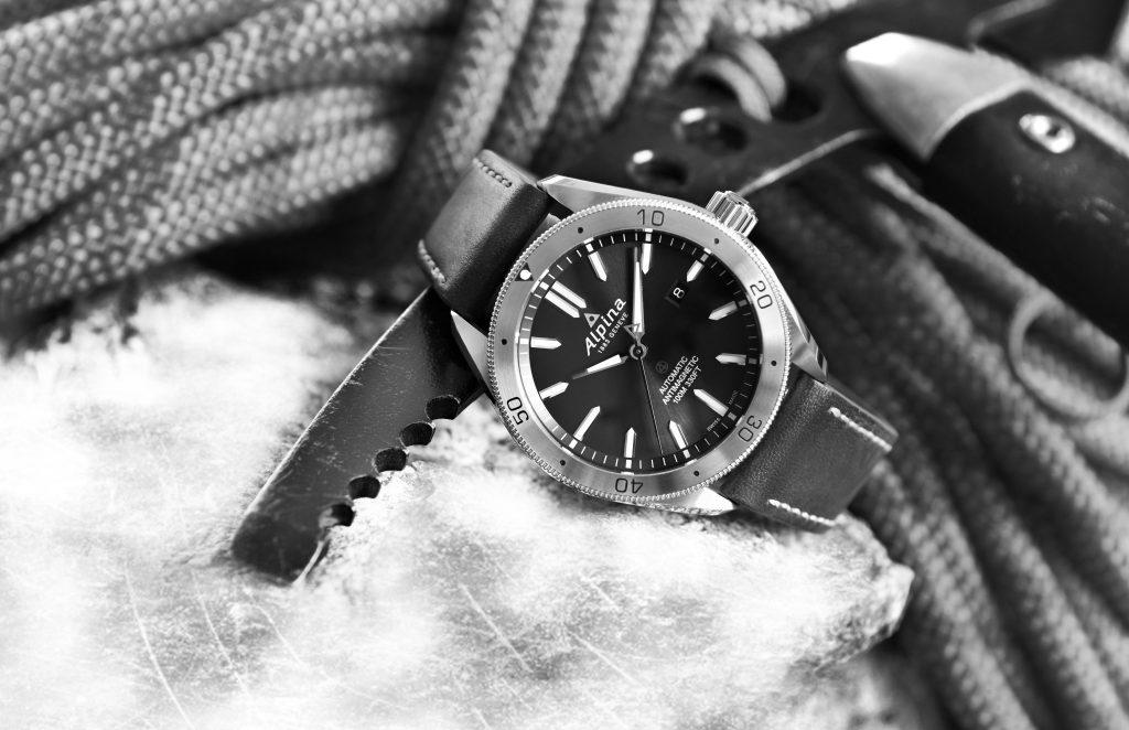 montre-alpina-situation