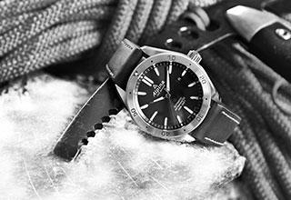 montre-alpina-vignette