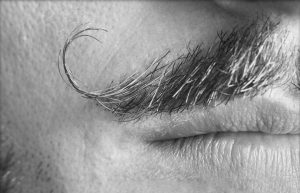 La moustache en guidon