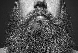 huile-barbe-vignette